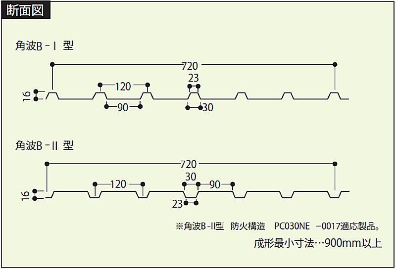 p63_b1b2-2